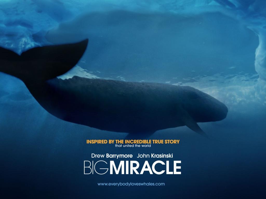 Recensione QUALCOSA DI STRAORDINARIO (BIG MIRACLE): L'unica cosa straordinaria di questo film è il budget.La Barrymore sfiora il patetico.